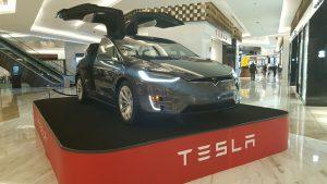 Tesla Palacios
