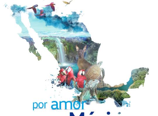 VW de México celebra el Día Internacional de la Biodiversidad